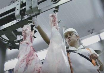 Política desastrosa de Temer causará fechamento de frigoríficos e demissões no Brasil