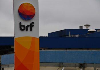 BRF retoma linha de produção de frango com 1,1 mil funcionários em Chapecó